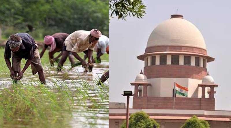 Bengali news: Supreme Court notice to Centre on petition challenging farm laws | Sangbad Pratidin
