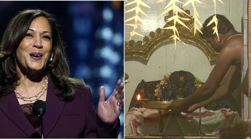 USA election news in Bengali: Special poojas for Kamala Harris' victory performed at Tamilnadu's temple | Sangbad Pratidin