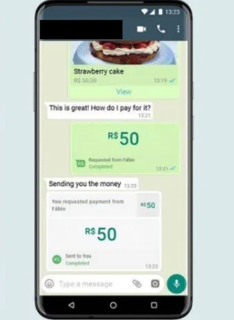 whatsapp pay starts