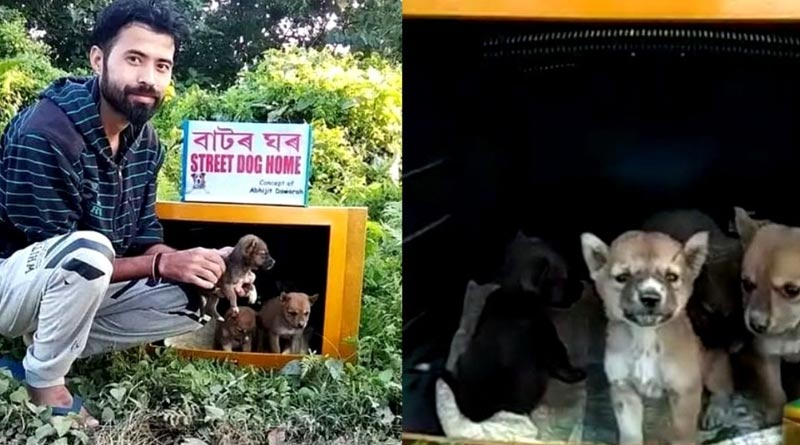 Assam youth builds tiny houses for stray dogs using old TV sets, his work goes viral| Sangbad Pratidin
