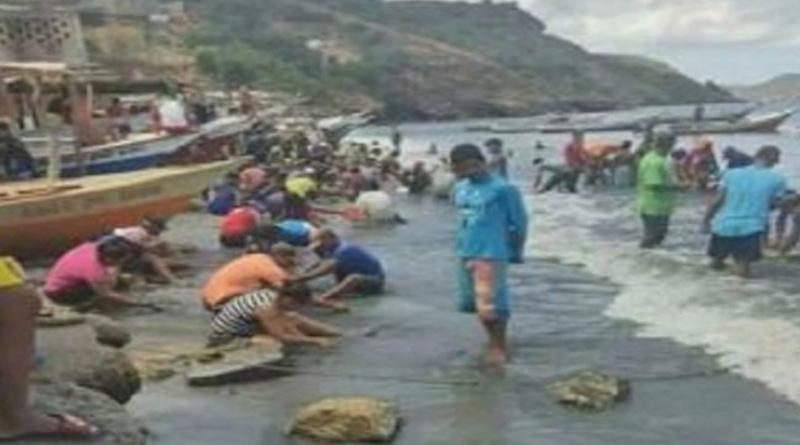 'Treasure Washes Up on Venezuela's Shore, Bringing Hope to a Village। Sangbad Pratidin