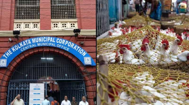 Bird flu is increasing panic in kolkata | Sangbad Pratidin
