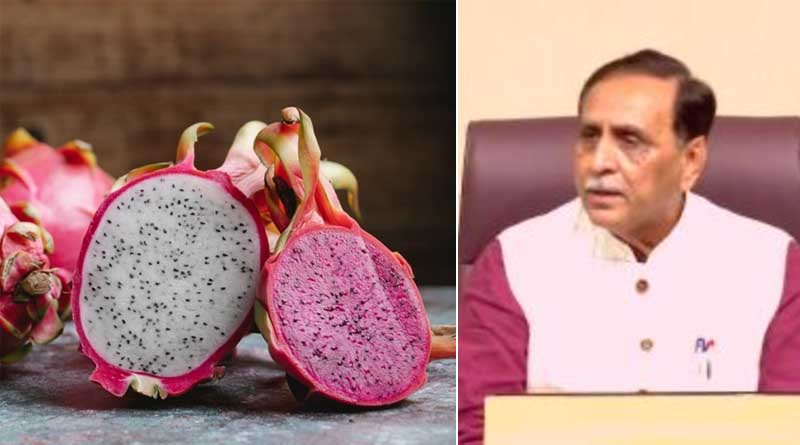 Dragon fruit renamed as 'Kamalam'; Gujarat CM Vijay Rupani explains the reason | Sangbad Pratidin