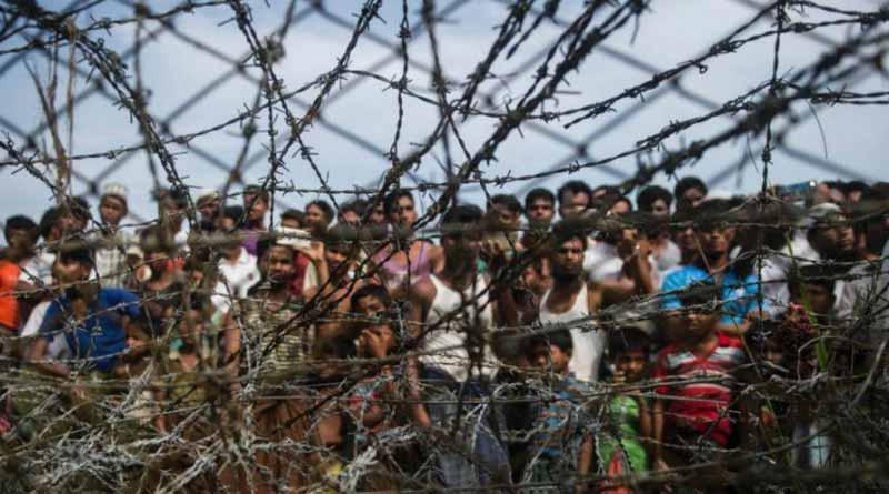 12 Rohingya refugees who fled from Bhasanchar held | Sangbad Pratidin