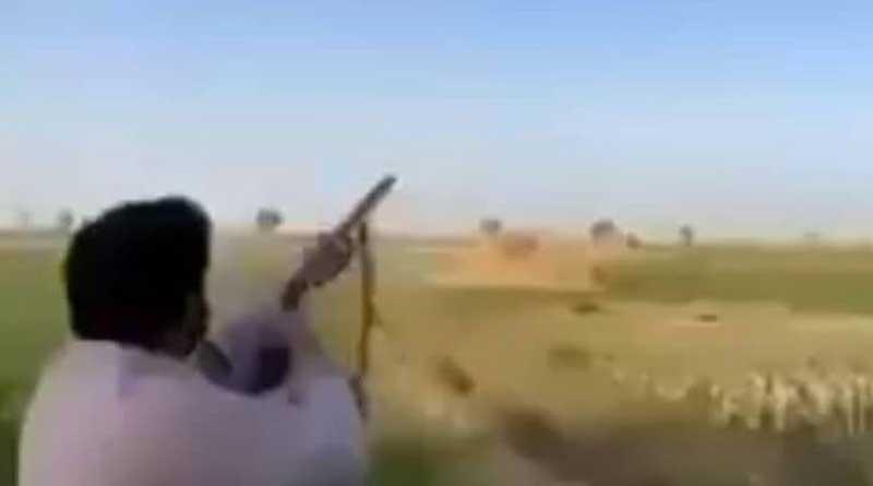Man shoots bird in viral video, Watch what happened next | Sangbad Pratidin