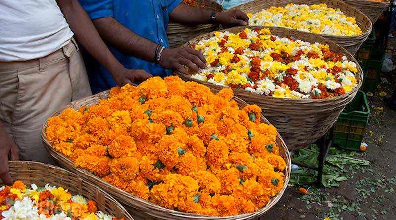 Market prices of flowers Falling due to weather | Sangbad Pratidin