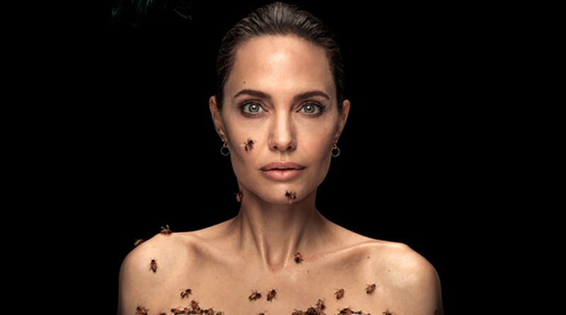 Angelina Jolie gets covered with bees for 18 minutes for a striking World Bee Day special Photoshoot   Sangbad Pratidin