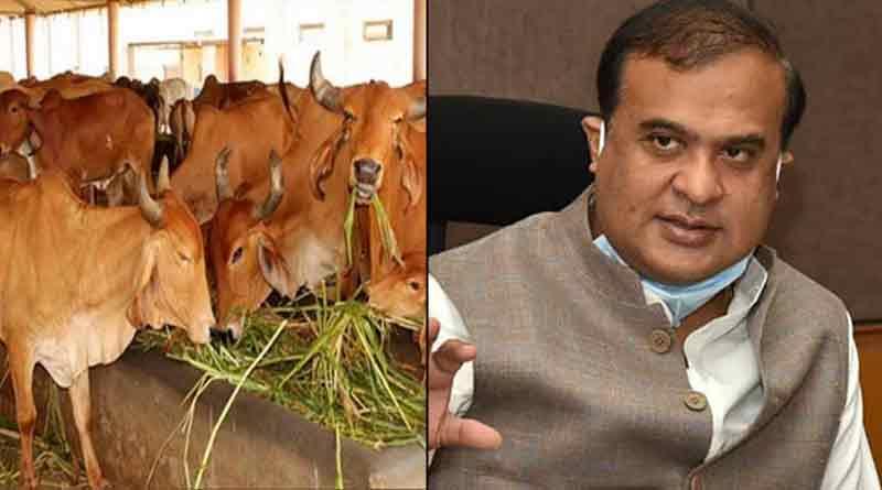 Assam's CM Himanta Biswa Sarma says Cow slaughter must be stop | Sangbad Pratidin
