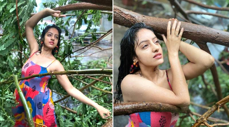 TV Actress Deepika Singh trolled on social media for posting dancing video and pictures beside an uprooted tree | Sangbad Pratidin
