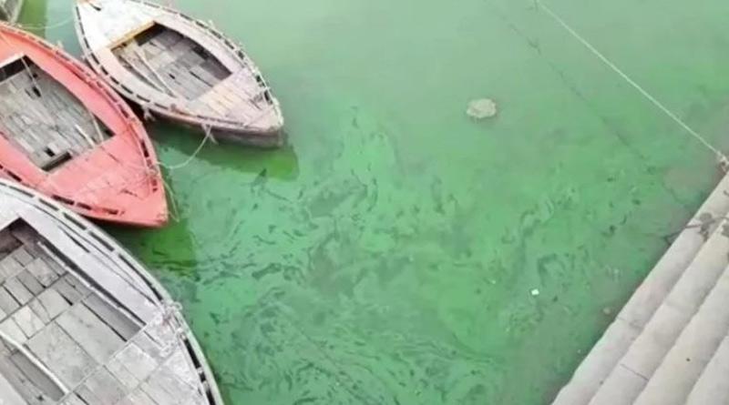 Ganga turns green in Varanasi during Covid-19 second wave | Sangbad Pratidin