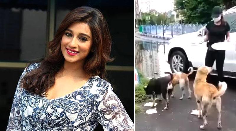Sayantika Banerjee gave food to stray dogs across Kolkata | Sangbad Pratidin