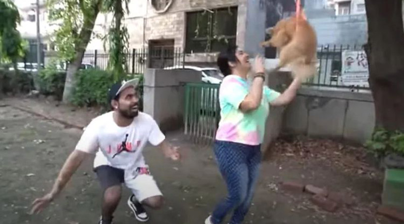 Delhi YouTuber makes pet dog fly using balloons in video, arrested for animal cruelty   Sangbad Pratidin