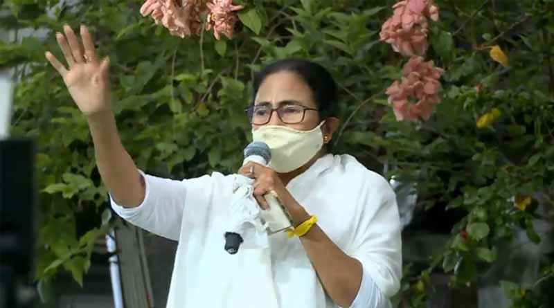 TMC makes new slogan to support Mamata Banerjee in by-election at Bhawanipore | Sangbad Pratidin