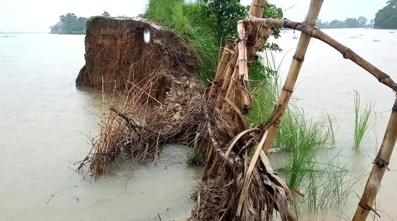 Bardhaman rain situation: Residents of Natungram in isolated due to overflow in Bhagirathi river | Sangbad Pratidin