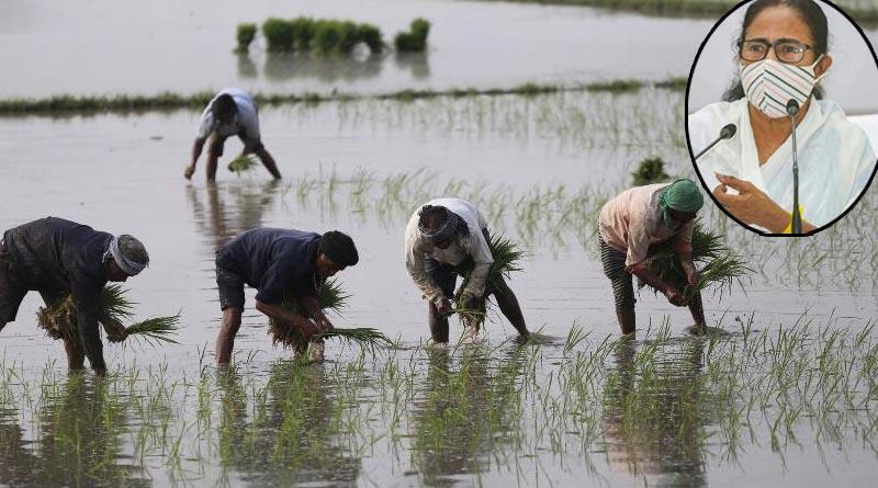 CM Mamata Banerjee tweets to unite for farmers on 10th anniversary of Singur Land Bill Pass |Sangbad Pratidin