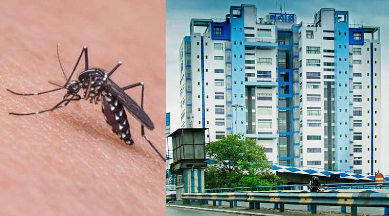 Bengal government sends a letter to centre for fund of dengue ।Sangbad Pratidin