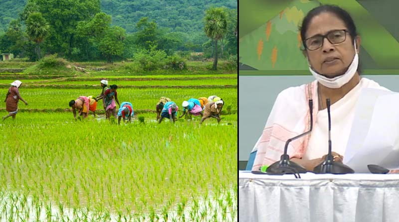 CM Mamata Banerjee inaugurates new Krishak Bandhu scheme | Sangbad Pratidin
