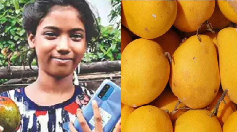 Girl sells 12 mangoes for Rs 1.2 lakh, buys smartphone for online classes | Sangbad Pratidin