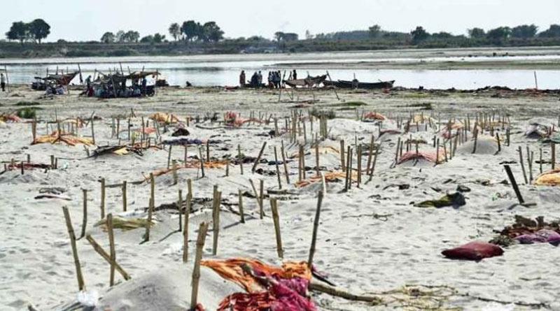 Bodies emerge in Prayagraj river banks as Ganga water level rise | Sangbad Pratidin