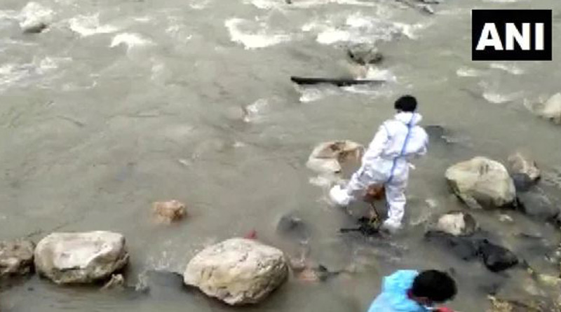 Dogs feed on bodies at Uttarakhand riverbank   Sangbad Pratidin