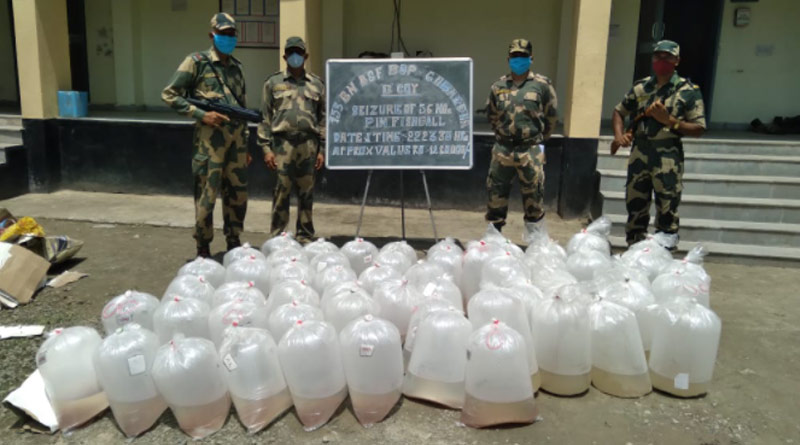 Prawn worth in lakhs seized from Basirhat near India-Bangla border | Sangbad Pratidin