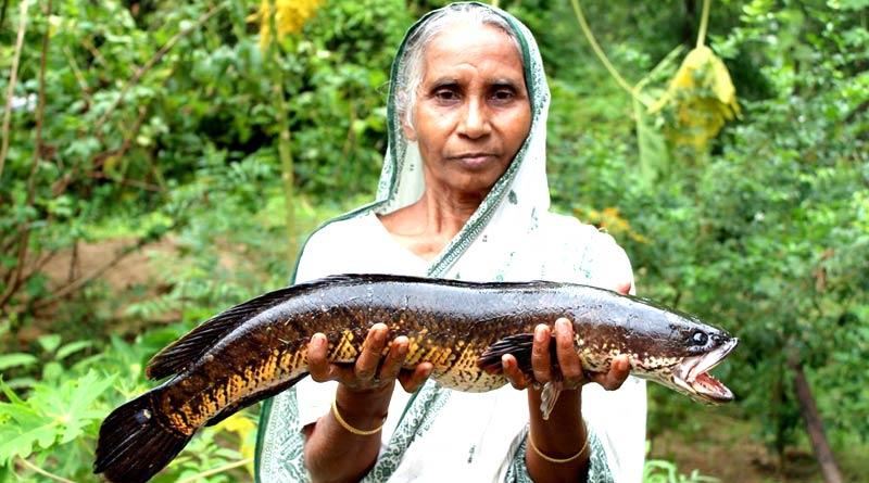Birbhum 'Grandmother' Pushparani Sarkar is big star in Youtube with great earning