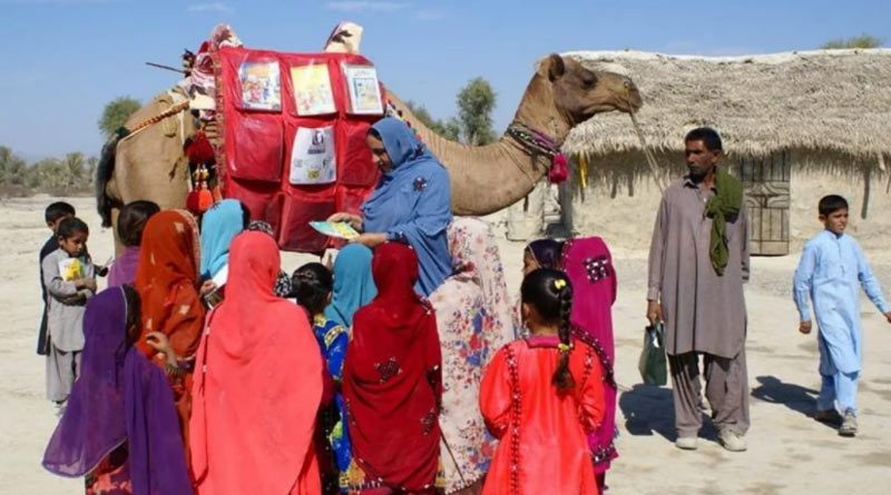'Camel Library project': How Roshan the camel is helping kids in rural Balochistan study from home   Sangbad Pratidin