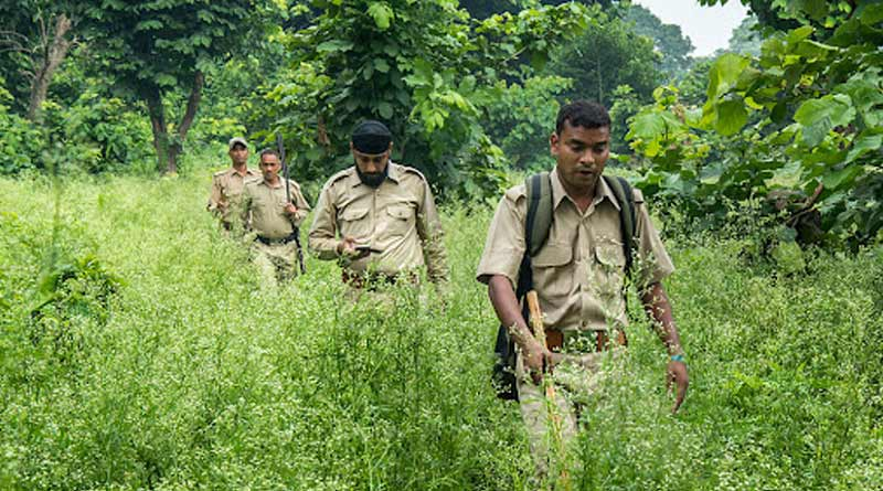 Forest department will buy arms for the employees to protect the forest | Sangbad Pratidin