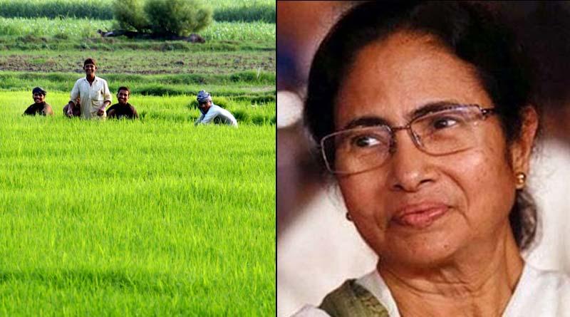 62 lacs farmers in WB get 'Krishak Bandhu' allowance within 15 days | Sangbad Pratidin