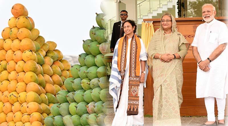 Bangladesh PM Sheikh Hasina sends special mangoes and other fruits for PM Narendra Modi and CM Mamata Banerjee   Sangbad Pratidin