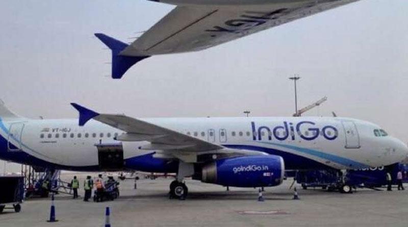 Snake found inside Mumbai-bound passenger flight at Dum Dum airport, fear sparks | Sangbad Pratidin