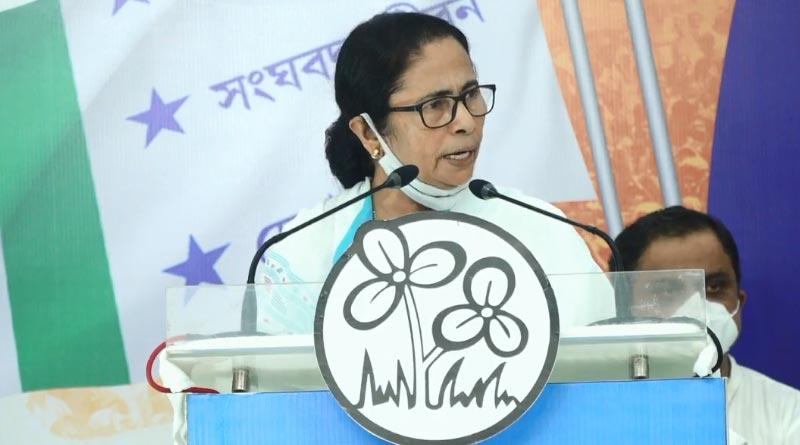 Here is what Mamata Banerjee said on TMCP foundation day | Sangbad Pratidin