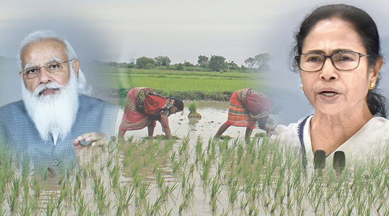 Almost 10 lakh farmers form Bengal excluded from PM Kisan list | Sangbad Pratidin
