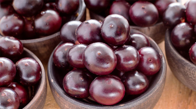Acai berry prevents early signs of aging | Sangbad Pratidin