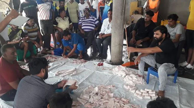Maharashtra fishermen's fortune change after selling 157 ghol fish for Rs 1.33 crores। Sangbad Pratidin