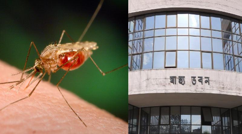 Swasthya Bhaban takes necessary steps to curb Dengue, Malaria in Kolkata and outskirts   Sangbad Pratidin