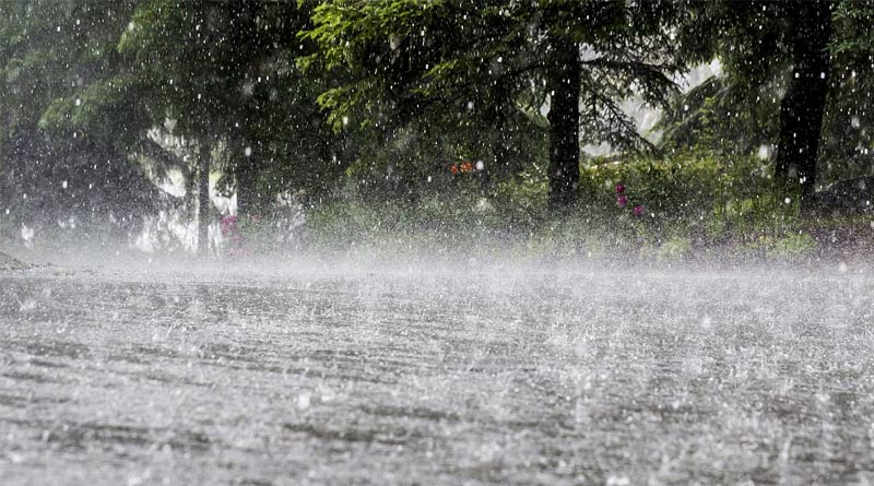 Weather Update: Heavy rain with storm may lashes Kolkata and south Bengal in this week | Sangbad Pratidin