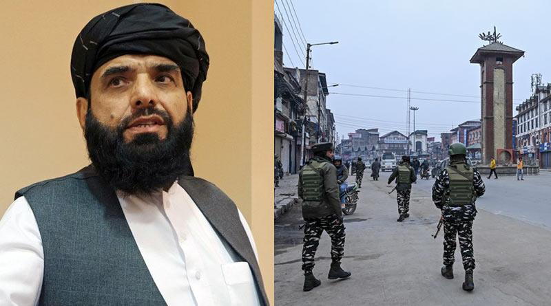 Taliban Terror: 'We have the right to raise voice for Muslims in Kashmir', says Taliban spokesperson Suhail Shaheen | Sangbad Pratidin