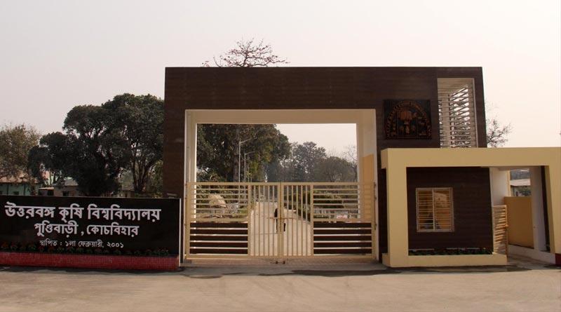 Various jobs in Uttar Banga Krishi Viswavidyalaya । Sangbad Pratidin