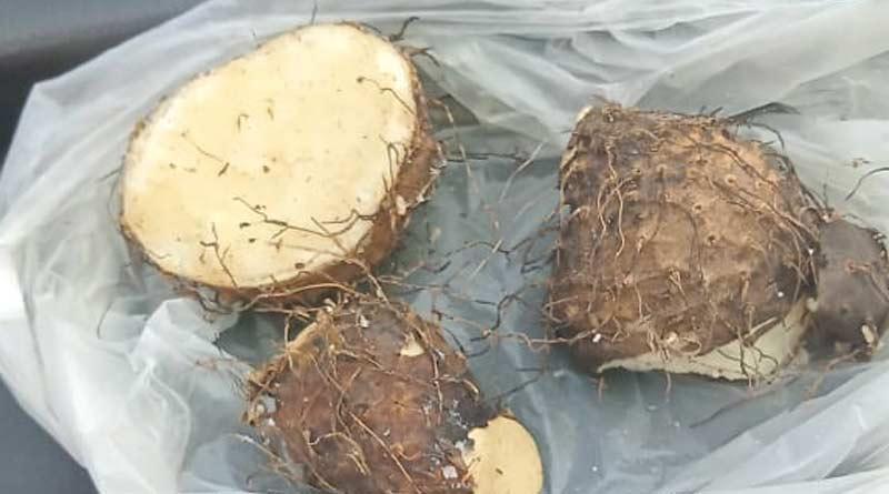 A person dies of suspected poisonous fruit in Purulia । Sangbad Pratidin